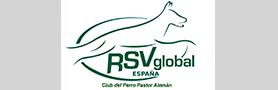 Rsv2000.es